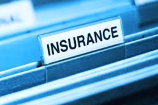 Insurance Firms